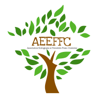 AEEFFC